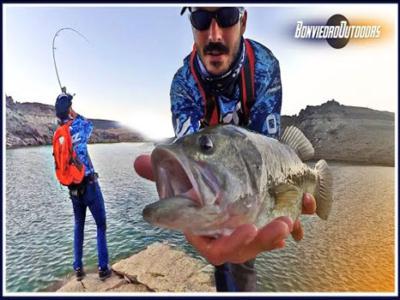 pesca de black bass desde orilla