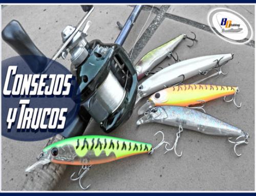 Equipo para Pescar con Jerkbaits