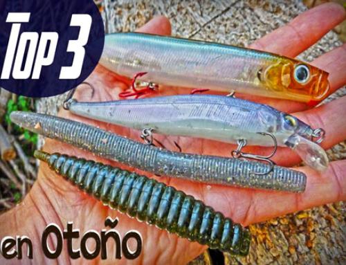 Señuelos para pescar Black Bass en Otoño