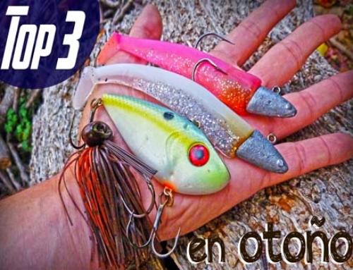 Señuelos para Pescar Luciopercas en Otoño